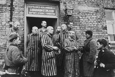 Auschwitz am Tag der Befreiung 1945