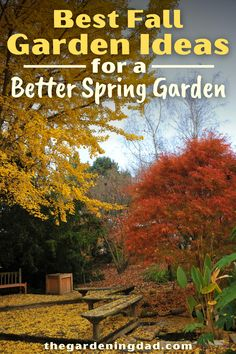 Do you want a better garden this year? Then use the Best Fall Garden Ideas for a Better Spring Garden! You'll love how easy and quick these garden activities are! #garden #gardening #gardenideas Autumn Garden, Easy Garden, Spring Garden, Garden Ideas, Cold Climate Gardening, Organic Gardening, Gardening For Beginners, Gardening Tips, Modern Outdoor Living