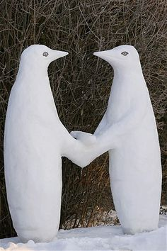 Image: Two penguin sculptures made of snow stand near Hohenschaeftlarn, Germany, Feb. Snow Sculptures, Sculpture Art, Metal Sculptures, Abstract Sculpture, Bronze Sculpture, Penguin Art, Penguin Love, I Love Snow, I Love Winter