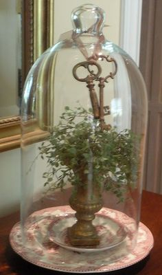 Glass Cloches and Bottle Displays Cloche Decor, Decoration Shabby, The Bell Jar, Bell Jars, Deco Luminaire, Centerpieces, Table Decorations, Deco Floral, Apothecary Jars