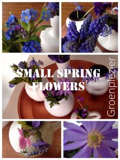 Tiny vases with small #spring #flowers. #bulbs  From my own #garden.  Blue and purple colors. #tuin #tuinieren Viola adorata, muscari, Anemone, Scylla (sterhyacinten)