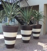 Awesome garden pots  - Tom 5 champagne albany