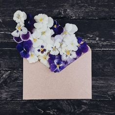 ✿Floralls✿ envelope series I by anna remarchuk