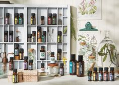 PURE Essential Oils are available in 22 individual varieties, five exclusive blends and two carrier oils—Fractionated Coconut and Sweet Almond. Each bottle is defined by its complete purity, uncompromising quality, and unmistakable aromatic excellence. Melaleuca offers these exceptional essential oils at some of lowest price points in the market today.