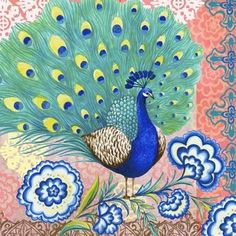 117 En Iyi Tavus Kuşu Görüntüsü 2019 Pavo Real Peacock Ve