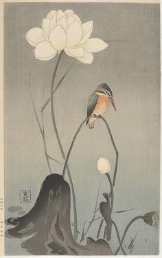 'Kingfisher on Lotus' (1900′s). Woodblock print by Ohara Koson 小原古邨 (1877 - 1945). Published by Yosaku Nishinomiya. Image and text information courtesy Freer Sackler. Copyright with museum.