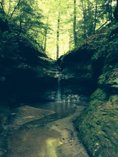 The Punch Bowl by Trail 3 at Turkey Run State Park (May, 2014)