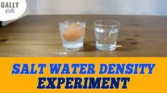 The easiest way to show salt water denisty ➽ Have you done this?