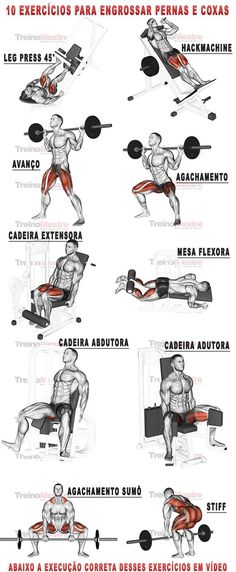 rutina de pierna gym