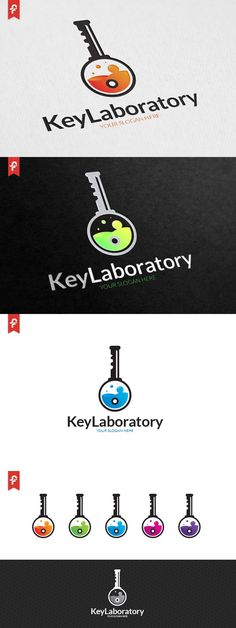 Key Laboratory Logo