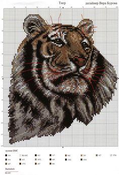 tigerhoved