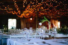 Target, Table Decorations, Weddings, Flowers, Photography, Home Decor, Photograph, Decoration Home, Room Decor