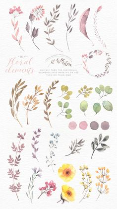 Watercolor flower edges + backgrounds by Lisa Glanz on Creative Market - Aqu . - Watercolor Flower Edges + Backgrounds by Lisa Glanz on Creative Market – Watercolor Botanical Illustration, Watercolor Illustration, Watercolour Painting, Tattoo Watercolor, Painting Art, Watercolor Design, Watercolor Ideas, Watercolor Plants, Floral Illustrations