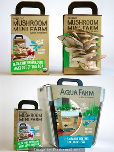 Innovative packaging from Double Six Design. A package that grows edible mushrooms right out the box and a self-cleaning fish tank that grows food.  www.double6design.com - created via http://pinthemall.net