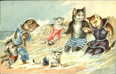 Cats in Bathing Suits at the Beach
