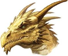 Dragons are Wicked Cool, but you cannot buy them :(