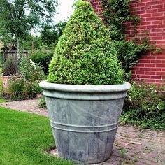 Attirant Large Black Glazed I Pot Garden Planter | Woodside Garden Centre | Pots To  Inspire | Extra Large Garden Pots | Pinterest | Garden Planters, Garden Pots  And ...