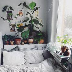 Se servir de tous les recoins #petit #chambre #plantes