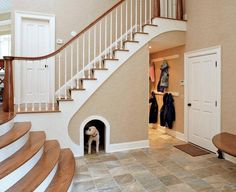 dog house under stairs Youve gotta see this: All the glorious crazy pet furniture you could ever dream of. Future House, My House, Puppy House, Built In Dog Bed, Space Under Stairs, Dog Rooms, Stair Storage, Staircase Storage, Coat Storage