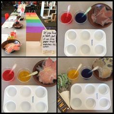 Myers' Kindergarten: Investigating the Colors of Leaves – Natural Playground İdeas Seasons Activities, Autumn Activities, Stem Activities, Fall Preschool, Preschool Science, Science Curriculum, Preschool Classroom, Full Day Kindergarten, Kindergarten Activities