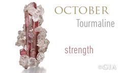 GIA Celebrates Birthstones –Tourmaline, the Chameleon of Gemstones (1/22/13)
