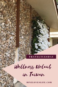 Wellness in Taiwan Taiwan, How To Dry Basil, Herbs, Wellness, Traveling With Baby, Traveling With Children, Island, Vacation, Herb