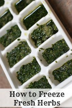 How to Freeze Fresh Herbs ~ part of our 31 Days of Freezer Cooking Recipes | 5DollarDinners.com