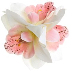PINK CYMBIDIUM ORCHID CLUSTER HAIR CLIP Make a bold yet delicate statement! The cymbidium orchid hair clip features 3 darling orchids attached securely to one single prong hair clip. Slides into any hair texture with ease for an instant vintage look! $19.00 #vintage #hairflower #hairaccessories #orchid #cymbidiumorchid