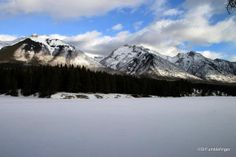 Views from Johnson Lake Trail in the Winter,  Banff National Park