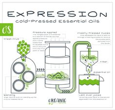 Cold Pressed Oil, Pressed Juice, Soap Making, Making Oils, Essential Oil Distiller, Essential Oil Combinations, Chemistry Classroom, Making Essential Oils, Natural Life