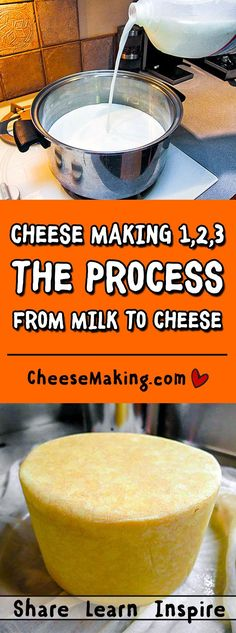 Cheese Making Process Cheesemaking - The Process Making Cheese At Home, Cheese Making Process, How To Make Cheese, Food To Make, Kefir, Cheese Recipes, Cooking Recipes, Fromage Cheese, Do It Yourself Food