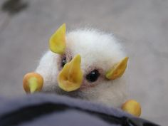 Honduran White Bat (Ectophylla alba). Adorableness in a tiny, white, flying furball <3