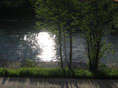 """Meu rio """"Salzach"""" com o sol Country Roads, Sun, Spring, Flowers"""