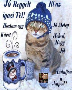 Good Morning, Winter Hats, Crochet Hats, Buen Dia, Knitting Hats, Bonjour, Bom Dia