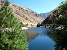 west fork Salmon River Riggins, Idaho