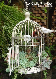 20 Best Decoration Ideas with Birdcage planters