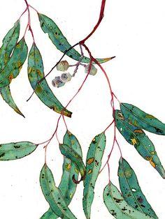 Gum leaves watercolour digital print on photographic paper, A3 size. $20.00, via Etsy.