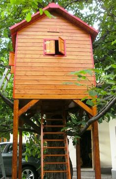 Rhea - the first tree house built by our craftsmen at Casute Kalman One Tree, House Built, Bucharest, Play Houses, Craftsman, Cabin, Architecture, House Styles, Building