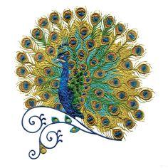 Peacock Machine Embroidery Designs | Swnpa131 Peacock Embroidery Design