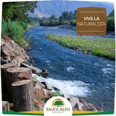 Nos encontramos en la Rivera del Rio Lurín, entre las montañas de la Cordillera de los Andes, un valle privilegiado por la Naturaleza en paisaje y vegetación. Te ofrecemos días soleados todo el año. ¡Visítanos a sólo 45 minutos de la Ciudad de Lima!