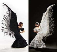A new twist on a classic: Karen Flamenco performs Swan Lake. What a beautiful photo. White Swan, Black Swan, Black And White, Spanish Dance, Dancing Figures, Swan Lake, Dance Photography, Ballerina, Wedding Dresses