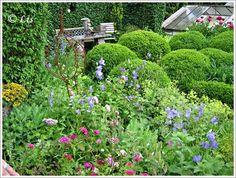 Neues vom Lindenhof: Gartenträume in Solingen