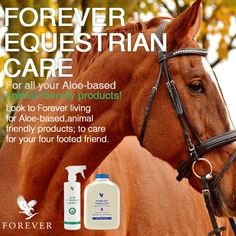 Forever Freedom - a nutritional balance that helps to maintain all the signs of a healthy animal…appetite, suppleness of joints & energy. #ponyhour  http://wu.to/0NM3CT