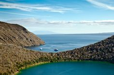 galapagos island - Google Search Galapagos Islands Ecuador, Theory Of Evolution, Animal Species, Archipelago, Pacific Ocean, Wildlife, Coast, World, Water