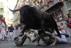 Encierros de toros