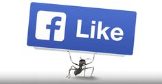 This Tactic for Getting More Facebook Likes is a Total No-Brainer -PostPlanner