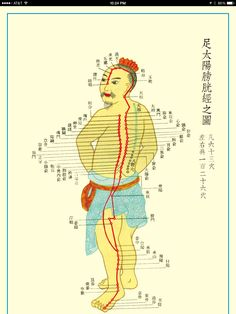 Ming dynasty acupuncture