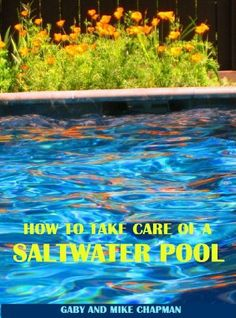 27 Best Saltwater Pool Images In 2015 Pools Swiming