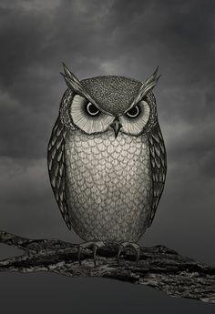 An Owl Art Print- http://society6.com/artist/MailyDegnan