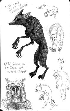 """Skinwalker Illustration-""""Navajo skinwalkers: sacy in large part because people who believe in them believe so sincerely that they don't dare to talk about them.'"""